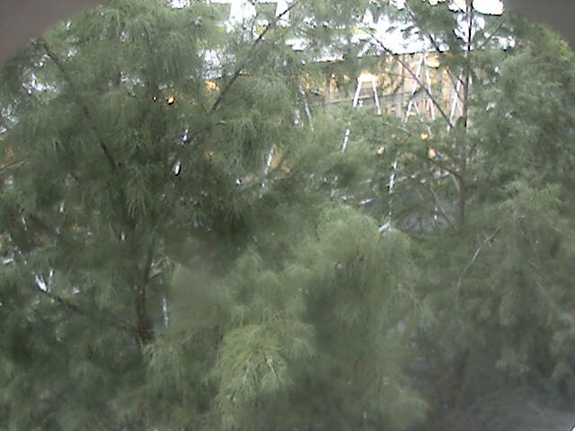 Clemson University Webcam - Lee Hall Expansion