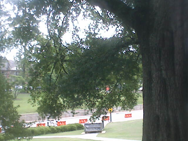 Clemson University Webcam - Bowman Field from Holtzendorff