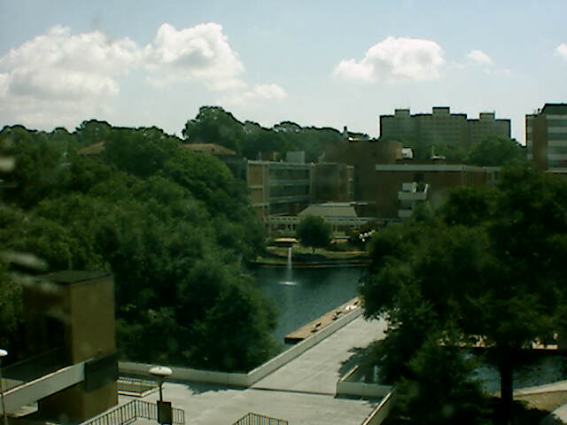 Clemson University Webcam - Library Bridge from Rhodes Research Center
